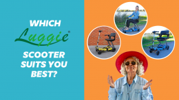 Which Luggie Scooter Suits You Best?